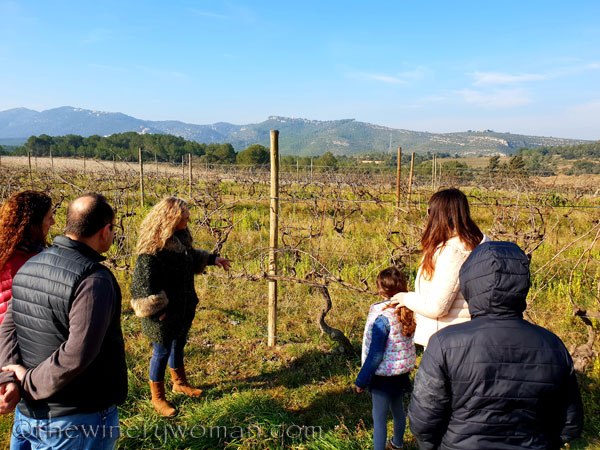 Winery_Tour_Viladellops2_2.9.19_TWW