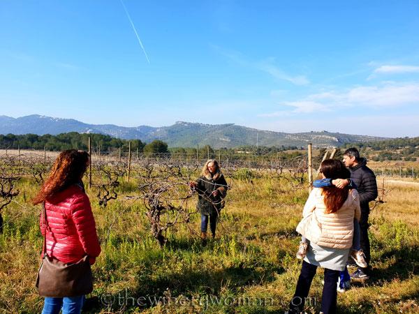 Winery_Tour_Viladellops5_2.9.19_TWW