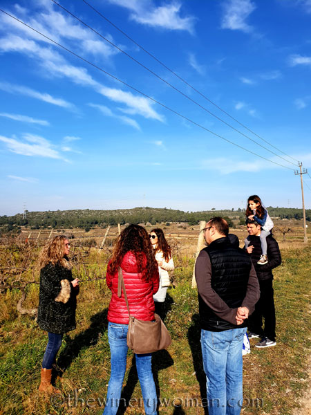 Winery_Tour_Viladellops_2.9.19_TWW