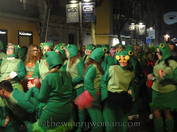 Carnaval_Parade41_3.1.19_TWW