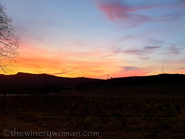 Sunset_Vineyard3_3.9.19_TWW