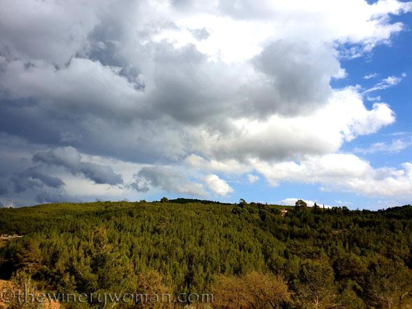 Sky_Vineyard5_4.9.19_TWW