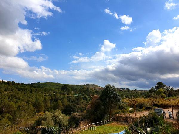 Sky_Vineyard6_4.9.19_TWW