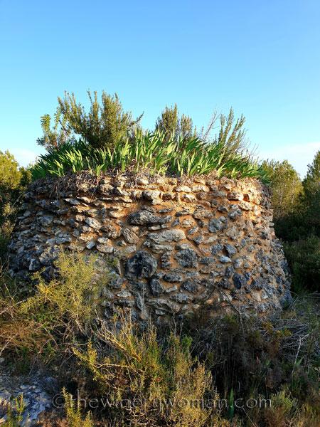 Stone_hut_Irises15_4.1.19_TWW
