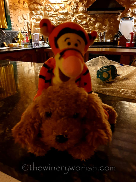Dfor-and-Tigger_6.2.19_TWW
