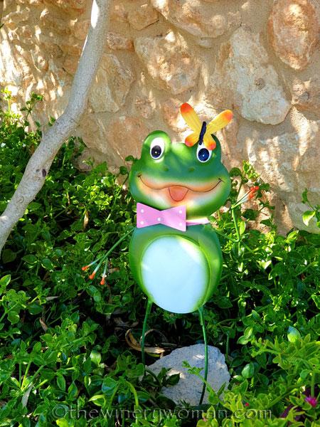 Garden_Frog3_5.31.19_TWW