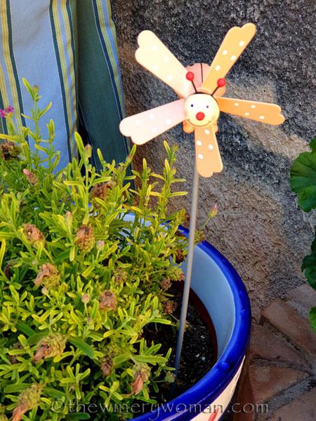 Garden_Ladybug_5.31.19_TWW