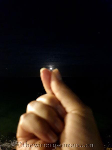 Tuesday_Full_Moon6_6.18.19_TWW