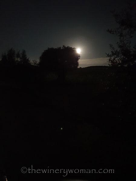 Tuesday_Full_Moon7_6.18.19_TWW
