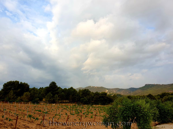 Rain_Clouds2_7.27.19_TWW