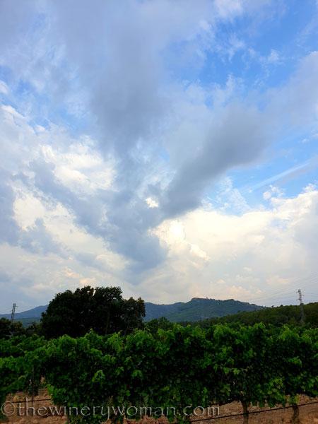 Rain_Clouds9_7.27.19_TWW