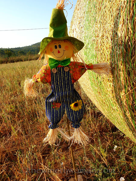 Scarecrow_and_Hay9_7.2.19_TWW