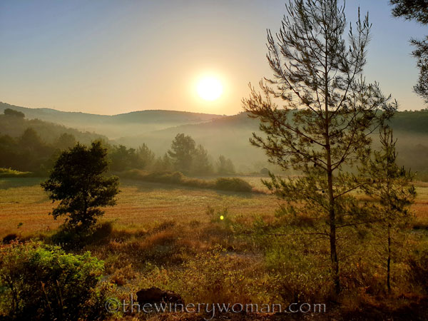Sunrise4_7.1.19_TWW