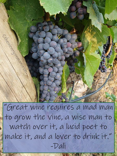 Dali-Wine-Quote_8.1619_TWW