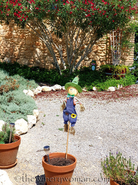 Scarecrow4_8.21.19_TWW