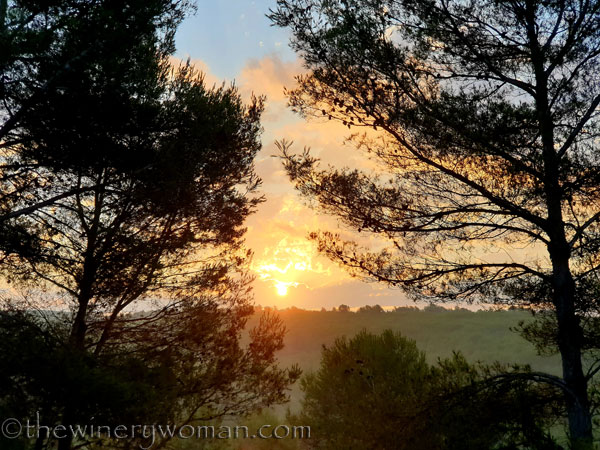 Sunrise2_7.29.19_TWW