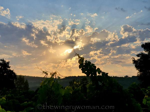 Sunrise4_7.29.19_TWW