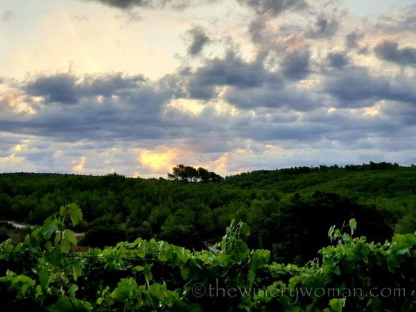 Sunrise_Clouds2_8.13.19_TWW