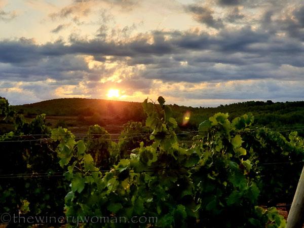 Sunrise_Clouds3_8.13.19_TWW