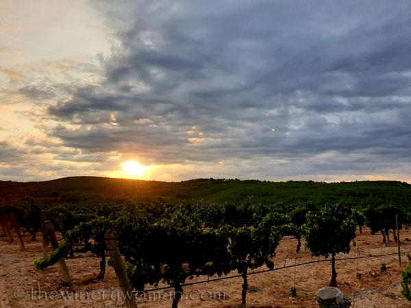 Sunrise_Clouds5_8.13.19_TWW