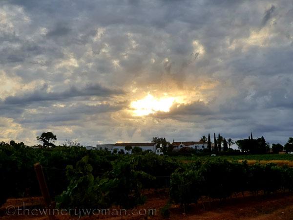 Sunrise_Clouds7_8.13.19_TWW