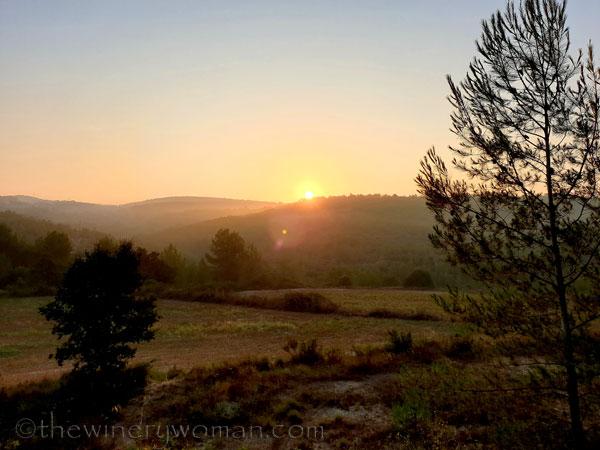 Sunrise_Vineyard8_8.8.19_TWW