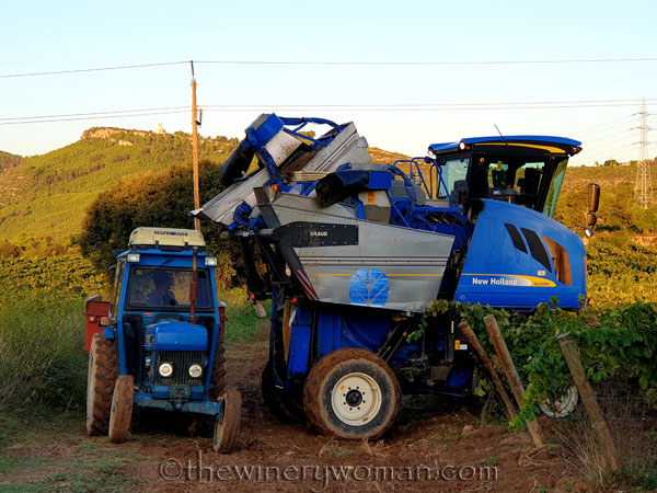 Harvest10_9.12.19_TWW