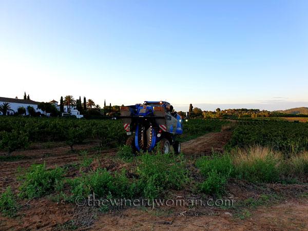 Harvest13_9.12.19_TWW