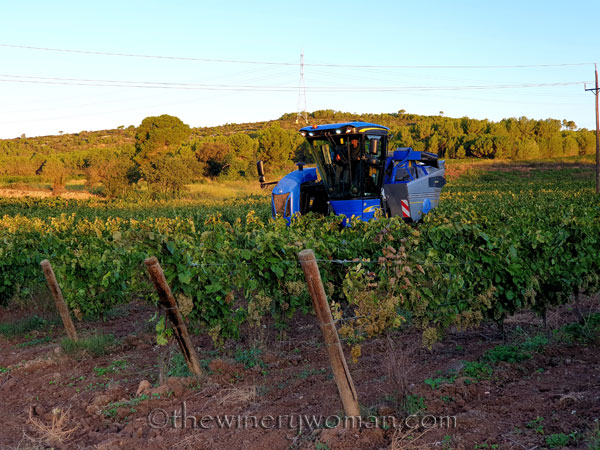 Harvest6_9.12.19_TWW