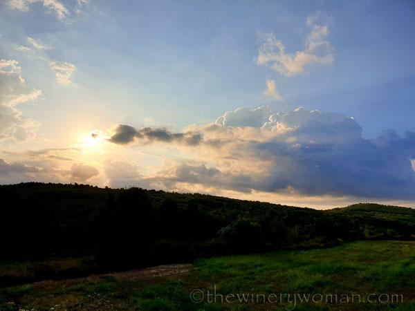 Sunrise10_9.5.19_TWW