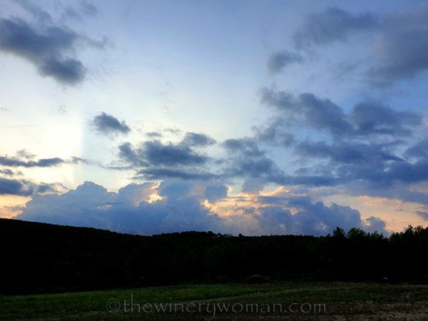 Sunrise2_9.5.19_TWW