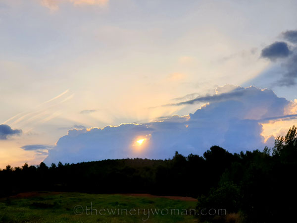 Sunrise3_9.5.19_TWW
