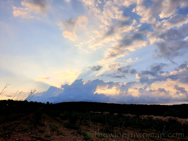 Sunrise6_9.5.19_TWW