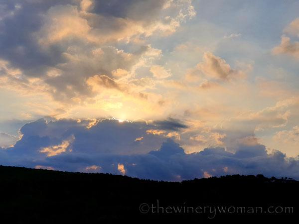 Sunrise9_9.5.19_TWW