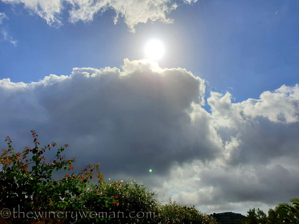 Natures_glory15_10.6.19_TWW