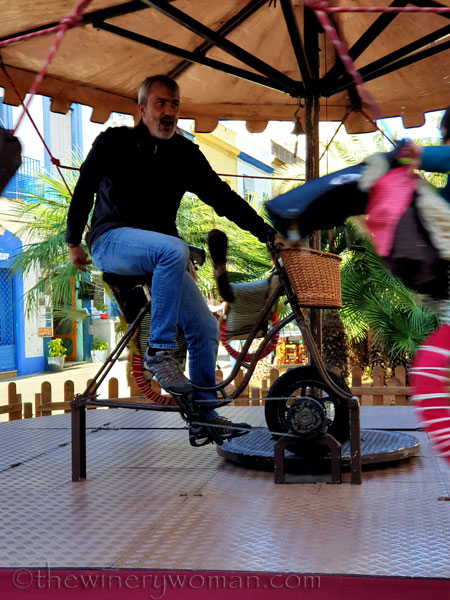 Merry-go-round7_11.9.19_TWW