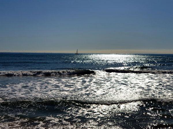Sea3_11.19.19.TWW