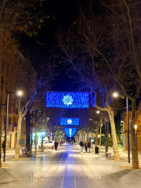 Vilanova_Christmas_Lights21_12.23.19_TWW