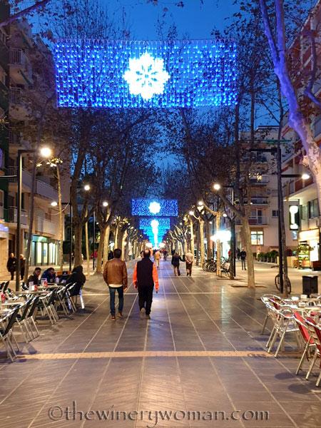 Vilanova_Christmas_Lights2_12.23.19_TWW