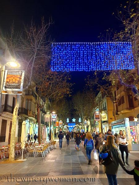Vilanova_Christmas_Lights4_12.23.19_TWW