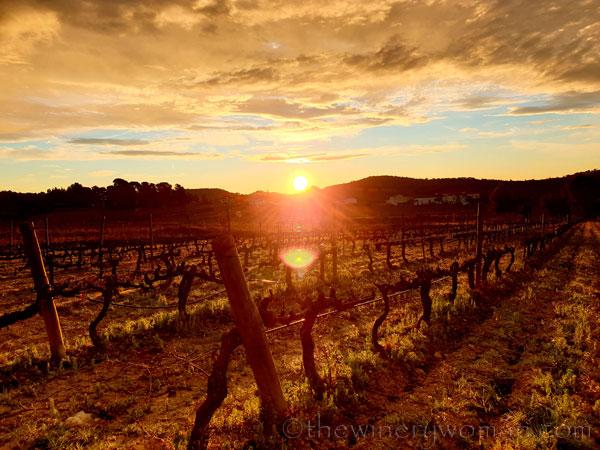 Sunrise_Viladellops10_2.1.2020_TWW