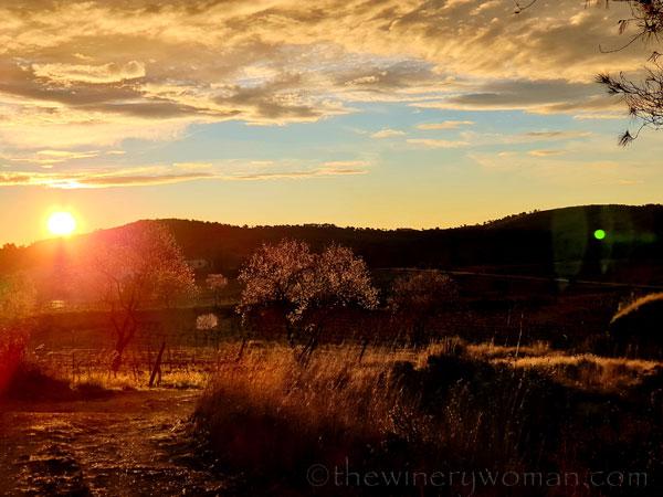 Sunrise_Viladellops11_2.1.2020_TWW