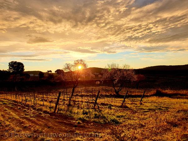 Sunrise_Viladellops13_2.1.2020_TWW