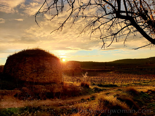 Sunrise_Viladellops15_2.1.2020_TWW