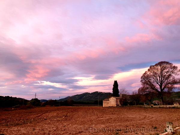 Sunrise_Viladellops2_2.1.2020_TWW