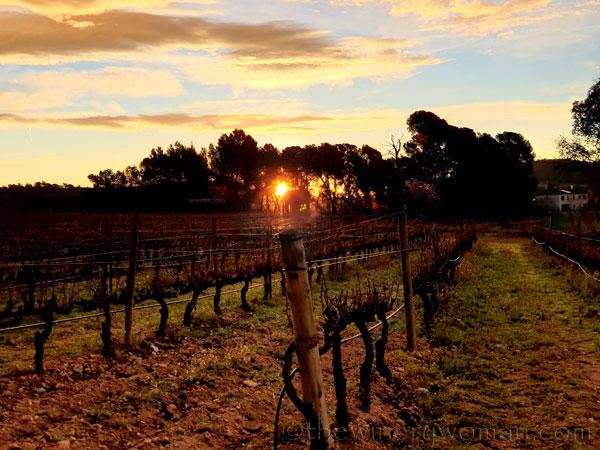 Sunrise_Viladellops8_2.1.2020_TWW