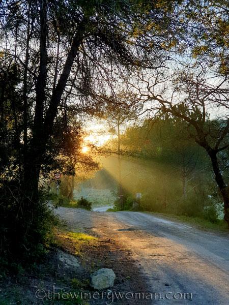 Sunrise_3.08.2020_TWW