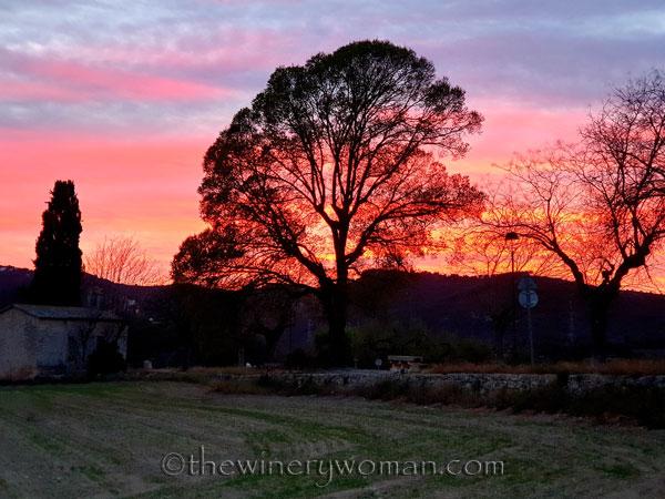 Sunset_3.7.2020_TWW